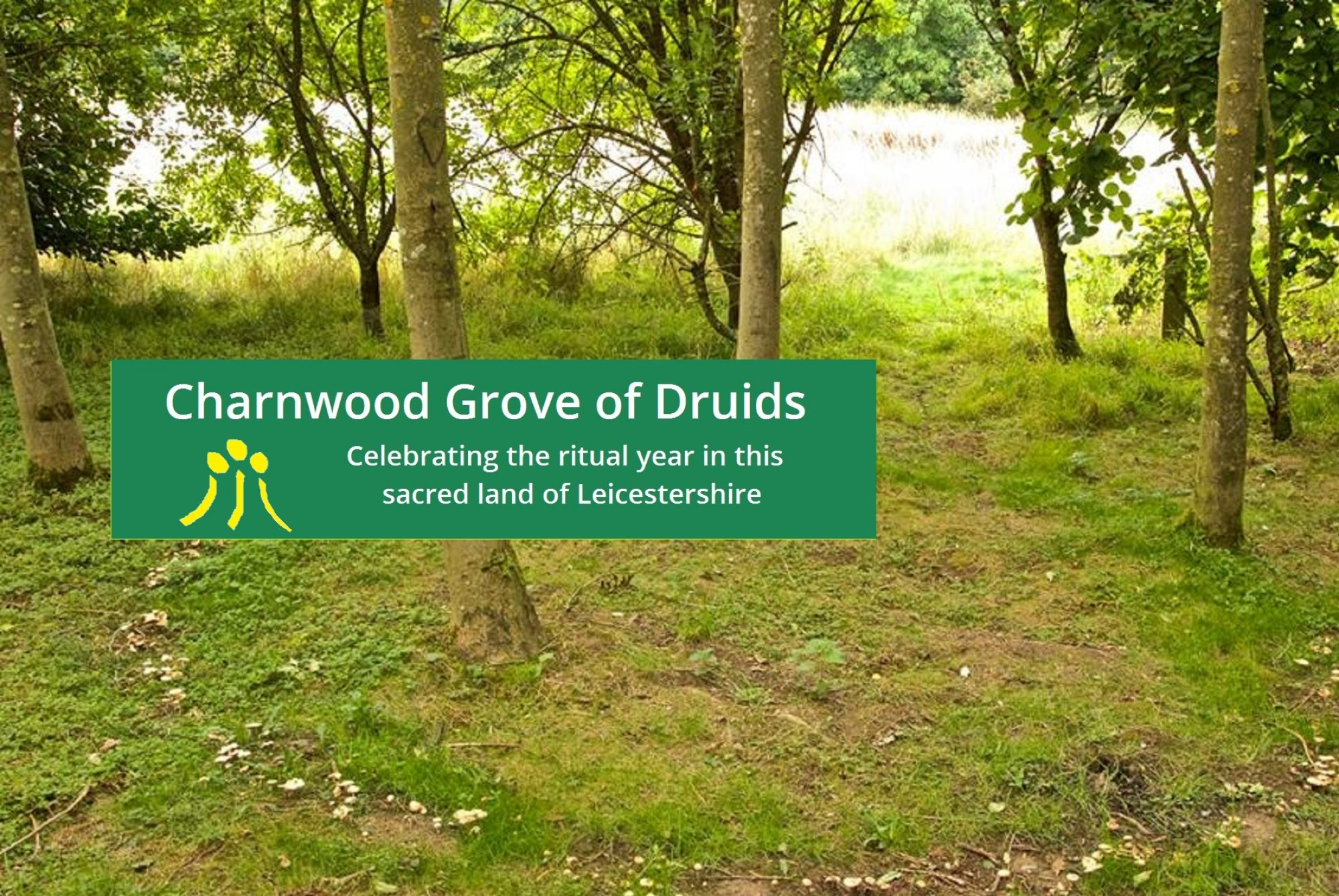 Charnwood Grove of Druids